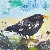 Blackbird Song 25cms.jpg