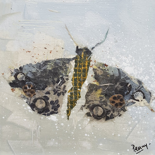 Moth Grey