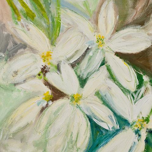 'Spring Daisies'greeting card