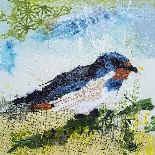 Swallow in the fields