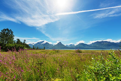 mountains-in-alaska-PWVMT76.jpg