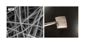 Medicated Nanofibers