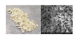 Polymeric Catalysts