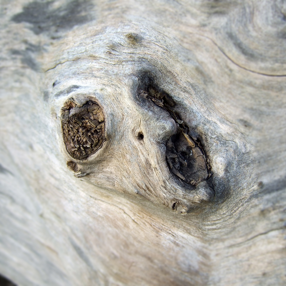 Wood with face