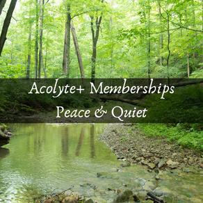 Peace & Quiet Exercise