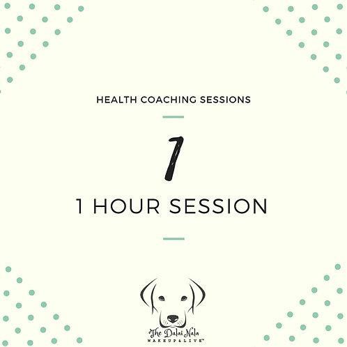 1 Hour Single Session