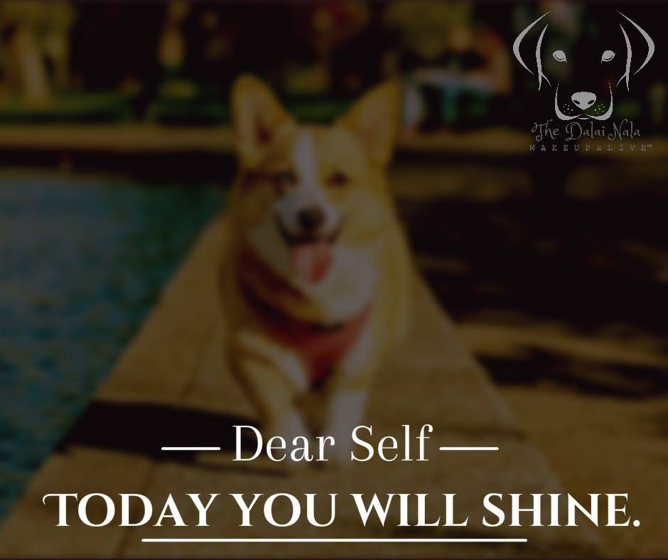 dear self...shine!