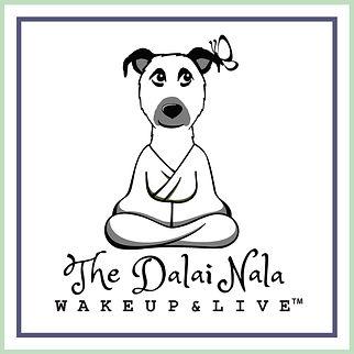 Dalai Nala logo w box.jpg