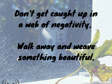 The Web of Negativity - Are you caught in it?