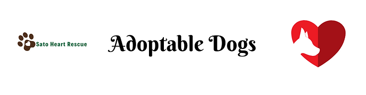 Adoptabledogs.png