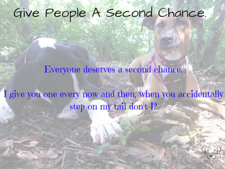 Second Chances...Not Three or Four
