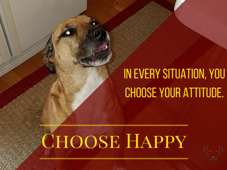 In Every Situation, YOU Choose Your Attitude.
