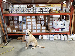 Contractor Supplies & Lucky the Dog!