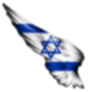 flag%20israel_edited.png