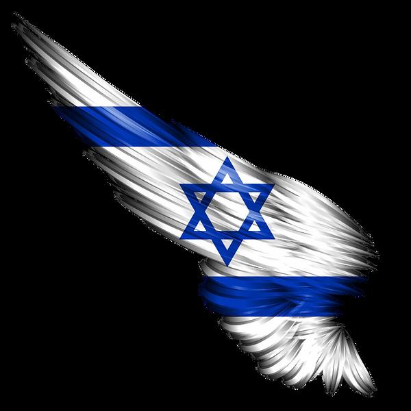 flag%20israel_edited.png