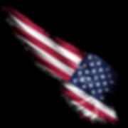 flag%20america_edited.png