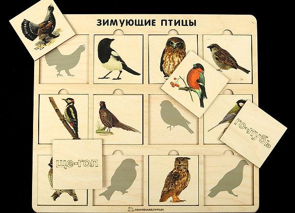 Игровое пособие «Зимующие птицы»