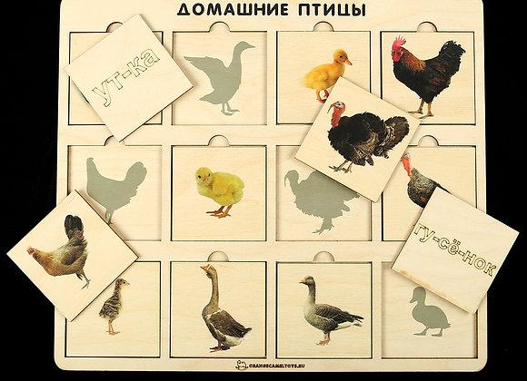 Игровое пособие «Домашние птицы»