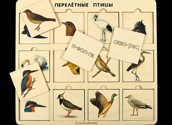 Игровое пособие «Перелётные птицы»