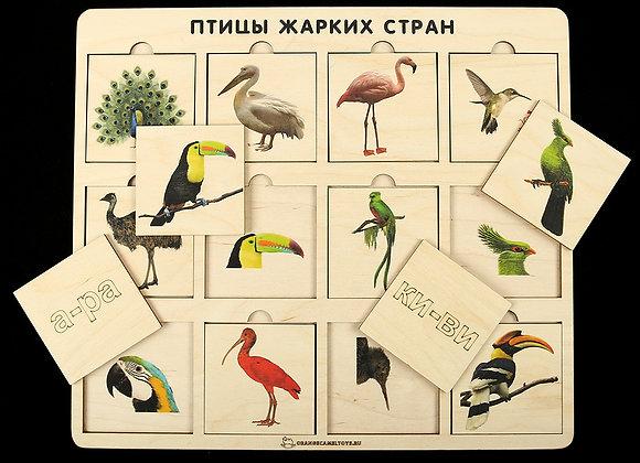 Игровое пособие «Птицы жарких стран»