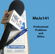 MeJo141 Professional Problems and Ethics