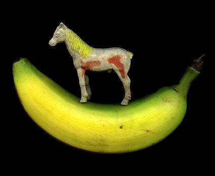 Andi Warhorse.jpg