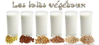 Comment faire du lait végétal maison...