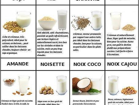 Remplacer facilement le lait de vache par un substitut.