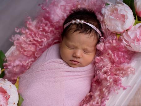 Baby Ariana. Brisbane newborn photography.