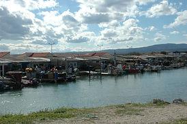 Le centre ostréicole de Leucate village