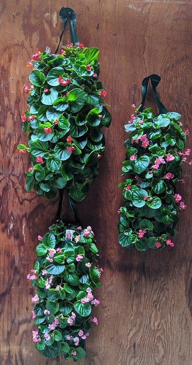 Begonia Wall Bags