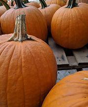 Pumpkin Details.jpg