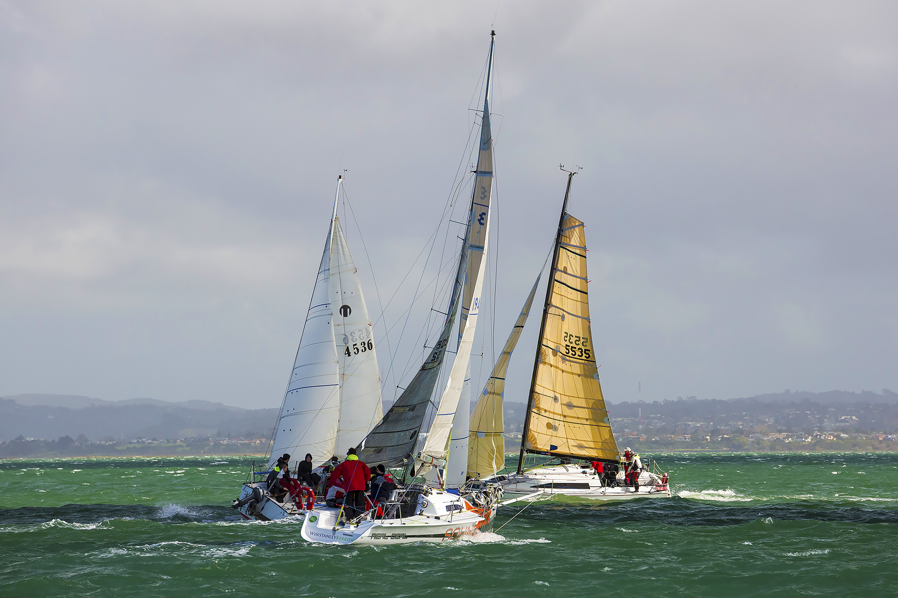 Sail Race in Auckland New Zealand