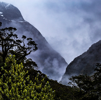 Milford Sound Road