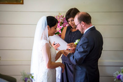 Asian Wedding in Howick Auckland