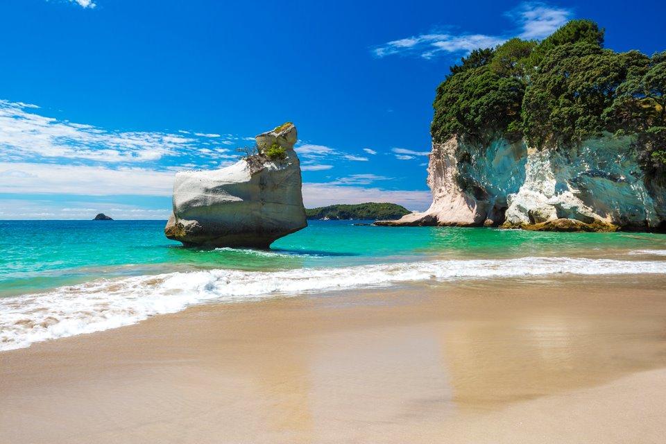 NZ North Island Tour