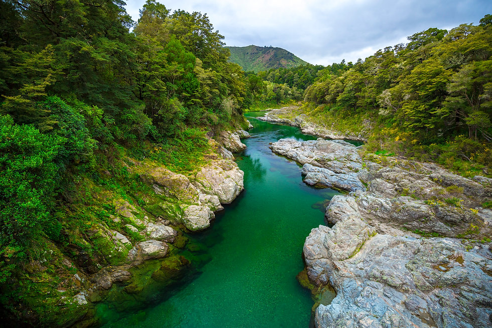 pelorus_bridge