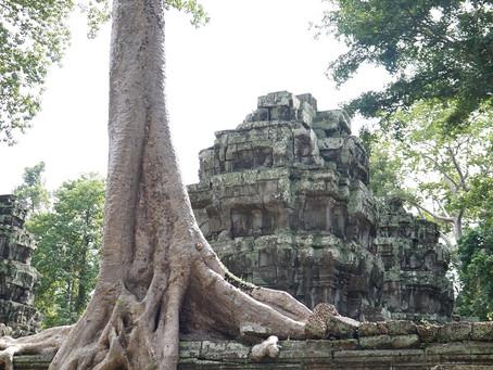 Angkor Wat - enkelten rakentama kaupunki?
