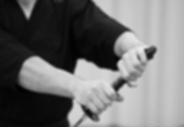 """Iaido"" ""arts martiaux"" ""Japon"" ""Iaido Nantes"" ""Iaido Loire Atlantique""  ""ESVN"" ""arts martiaux vignoble nantais"" ""arts martiaux Loire Atlantique"" ""Iaido 44"" ""arts martiaux 44"" ""arts martiaux traditionnels"" ""arts martiaux Nantes"" ""Katana"" ""iaito"" ""sabre"" ""sabre japonais"" ""Iaido La Haye Fouassière"" ""Iaido La Haie Fouassière"" ""arts martiaux La Haye Fouassière"" ""arts martiaux La Haie Fouassière"" ""Judo La Haye Fouassière"" ""Judo La Haie Fouassière"" ""JJKH"""