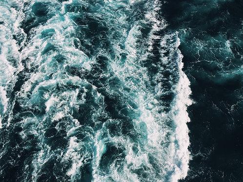 Navegando Conflitos