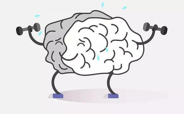 動物實驗-健腦1.jpeg