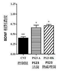 PS23青春益生菌-抗老益生菌-蔡英傑-動物實驗-健腦2.jpg