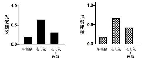 PS23青春益生菌-抗老益生菌-蔡英傑-動物實驗-生髮3.jpg