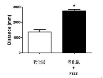 PS23青春益生菌-抗老益生菌-蔡英傑-動物實驗-疲勞3.jpg