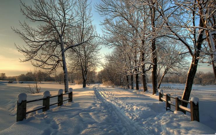 snowy_country_road-winter_theme_desktop_