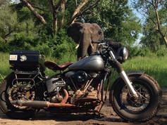 Gareth Jones' '51 Harley