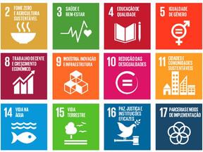 Nota de Repúdio à desistência do Governo Brasileiro de apresentar relatório sobre os ODS na ONU