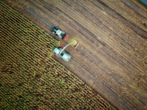 Whose Agriculture Drives Disease?