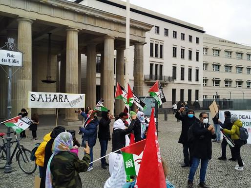 Photo Gallery - 28 November 2020, Rally for Western Sahara