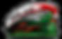 Локомотив лого.png